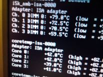 Temperatura de la RAM con la carcasa abierta. Cerrada llegaba a más de 100ºC